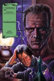 FRANKENSTEIN: GRAPHIC NOVEL SADDLEBACK ILLUSTRATED CLASSICS
