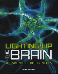 LIGHTING UP THE BRAIN