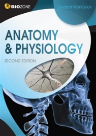 BIOZONE ANATOMY & PHYSIOLOGY STUDENT WORKBOOK 2E