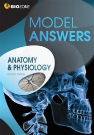 BIOZONE ANATOMY & PHYSIOLOGY MODEL ANSWERS 2E