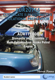 CERT II IN AUTOMOTIVE VOCATIONAL PREPARATION: DISMANTLE & ASSEMBLE MULTI-CYLINDER FOUR STROKE PETROL ENGINES EBOOK (Restrictions apply to eBook, read product description)