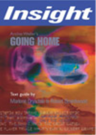 INSIGHT TEXT GUIDE: GOING HOME