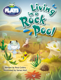 BUG CLUB: LIVING IN A ROCK POOL